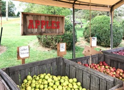 Winchester, Virginia: Fall Fun Abounds in Apple Country