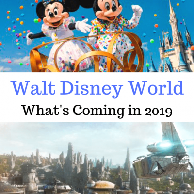 2019 at Walt Disney World- Endless Fun and New Adventures