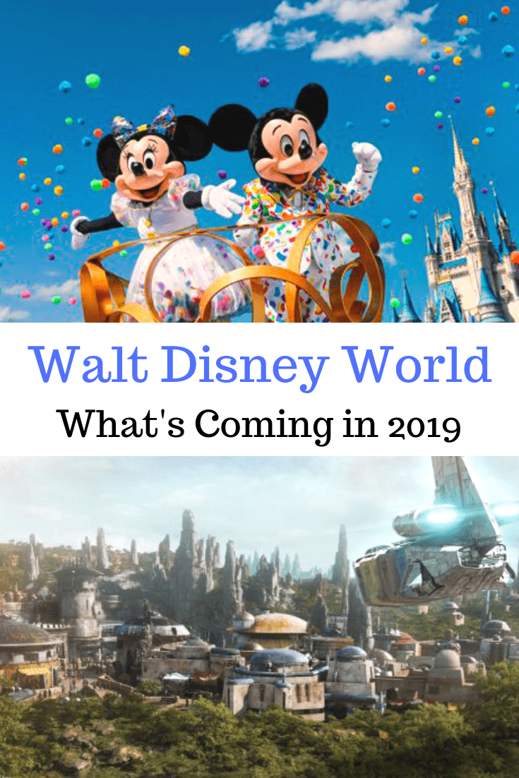 2019 at walt disney world